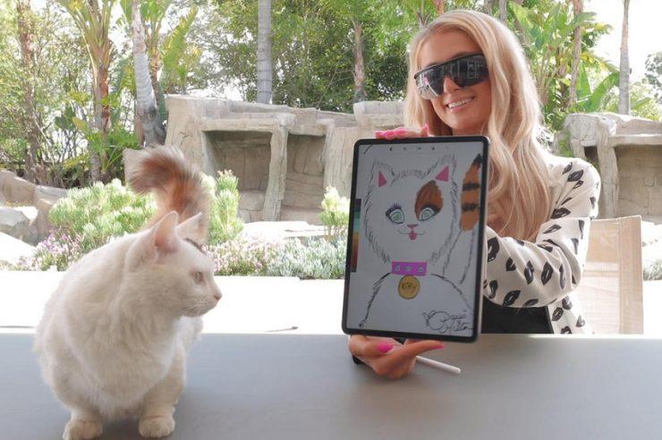 Paris Hilton subasta el retrato de su gato como un token NFT en la blockchain Ethereum